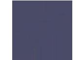 fast_purple-150x150